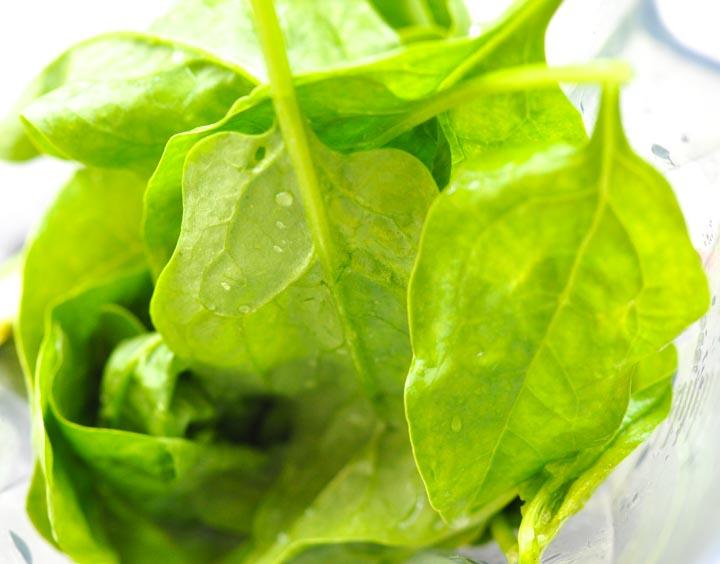 szpinak to najdelikatniejsze rodzaj zielonych liści do zielonych koktajli